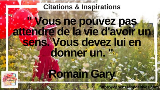citation de Romain Gary