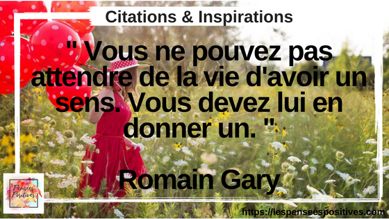 citation de Romain Gary